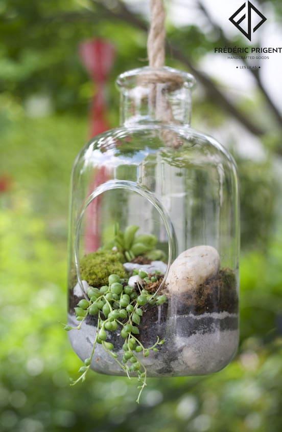 terrarium suspendu plante succulente carreaudutemple ateliers fredericprigent. Black Bedroom Furniture Sets. Home Design Ideas