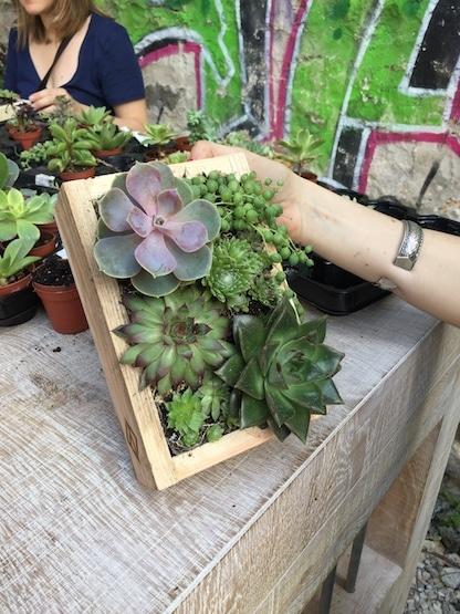 happyfolk atelier vegetal 8 fredericprigent. Black Bedroom Furniture Sets. Home Design Ideas