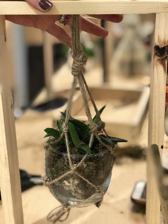 Mise en place du pot dans le cadre en bois
