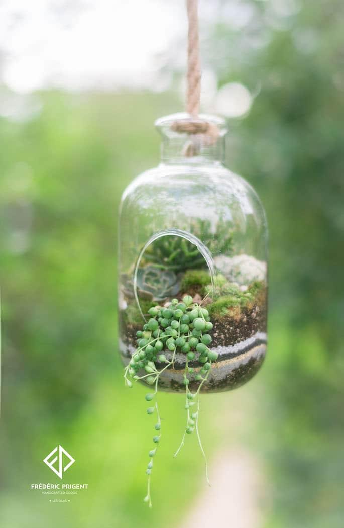 atelier terrarium a suspendre diy succulentes ush. Black Bedroom Furniture Sets. Home Design Ideas