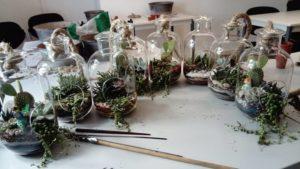 USH, terrarium, succulentes