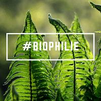 BIOPHILIE - visuel