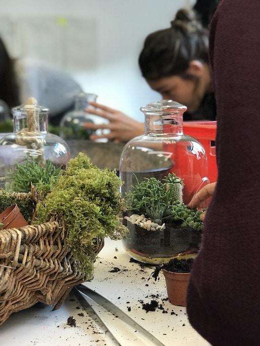 Atelier terrarium wabi sabi green studio pour l'AFD avec YWG